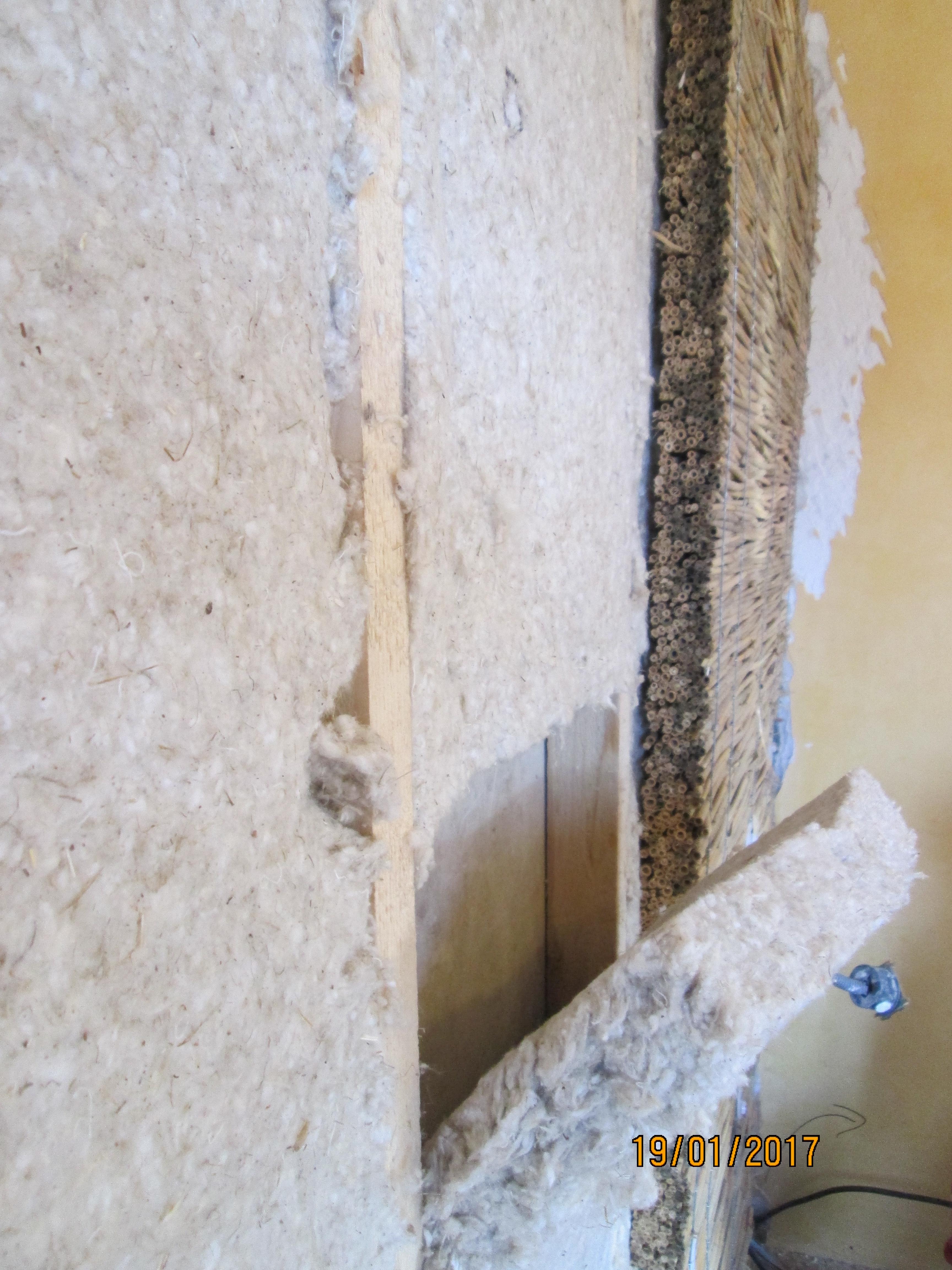 Vieujot Platre Et Chaux isolation en roseau et laine de chanvre – batilibre : neuf